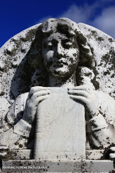 Avid Reader (Hastings Township Cemetery, Hastings MI)