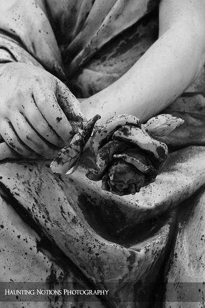Handpicked (Woodlawn Cemetery, Detroit MI)
