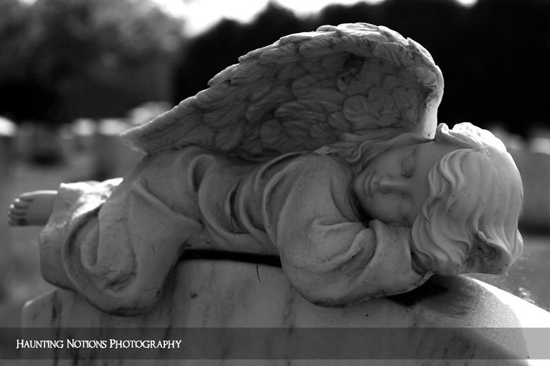 A Softer Place To Land (Clinton Grove Cemetery, Clinton Township MI)