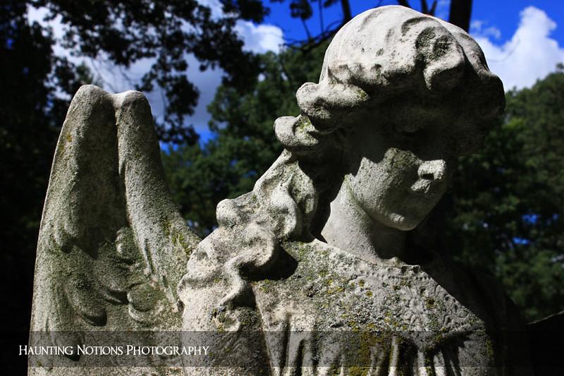 Shady Lady (Woodlawn Cemetery, Detroit MI)