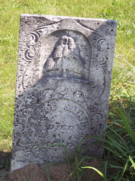 """Tyrone Cemetery, Talleyrand, Iowa.  Another """"fat willow."""""""