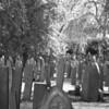 Many headstones