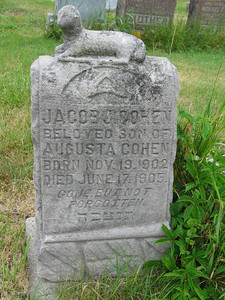 Jacob J. Cohen