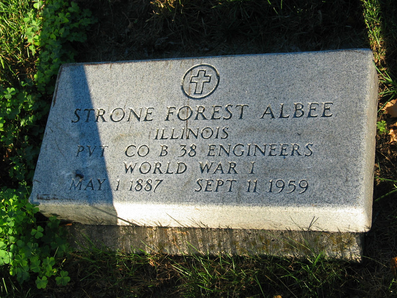 Strone Forest Albee