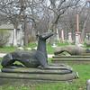 Stein Dogs of Death