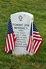 US Navy Veteran, Camp Nelson National Cemetery, Jessamine County, Kentucky