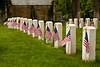 Veterans' Graves, Forest Hill Cemetery, Madison, Wisconsin