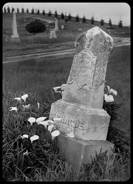 Cemetery stones and statuary - Pescadero, CA