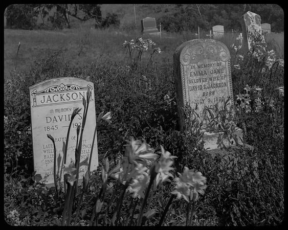 Headstones - Pescadero cemetery