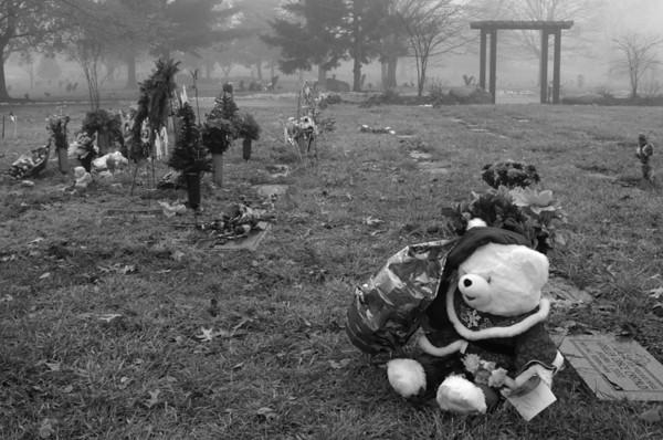 Cemetery/Infant 2001