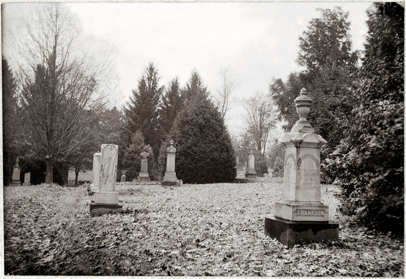 Rev. William Franklin Lot, West Genoa Cemetery, King Ferry, N.Y. (Photo ID: 34488)