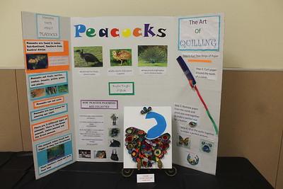 Center Elementary School's G.T. Fall Presentation