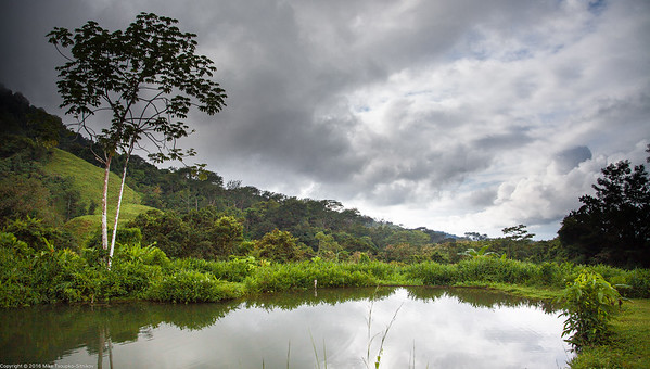 Rainmaker Park, Costa Rica