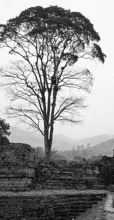 Copan ruins 3