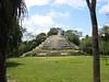 The Royal Complex of Lamanai
