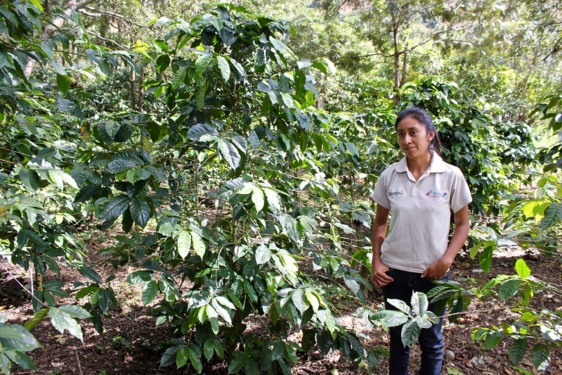 Carmen of Carmen's coffee among her coffee plants in Antigua, Guatemala
