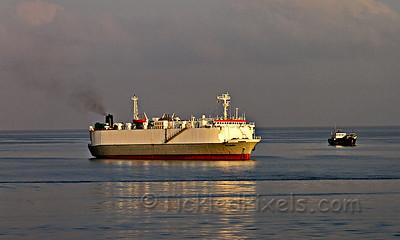 Ro-Ro Cargo Ship 'Neameh'