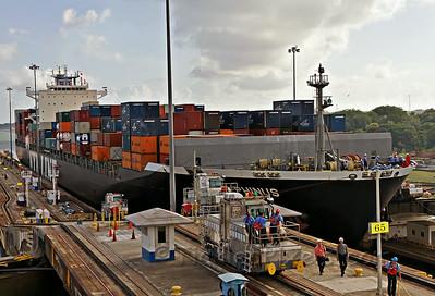 Container Ship NYK Delphinus