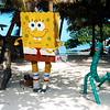 caye caulker, belize, spongebob