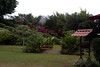 <center>Britt Coffee Plantation </center>