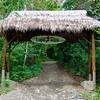 Lapa Rios   Osa Peninsula