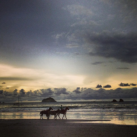 Who's gonna ride your wild horses? (Ok, that's cheesy and those aren't wild horses, but it was a beautiful scene anyhow.) Playa Manuel Antonio, Costa Rica