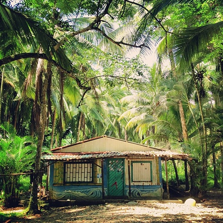 Jungle-licious surf hut -- Dominical, Costa Rica