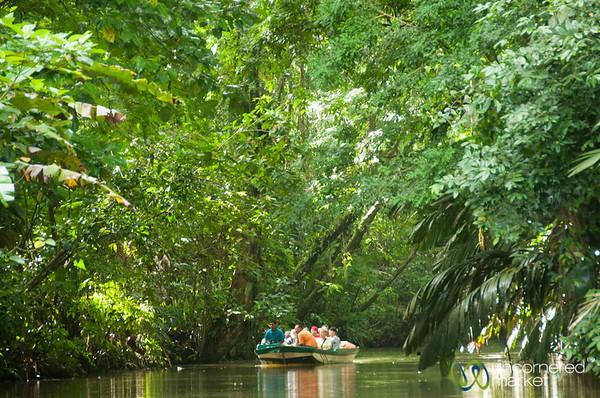 Tortuguero Canals, Boat Ride - Costa Rica