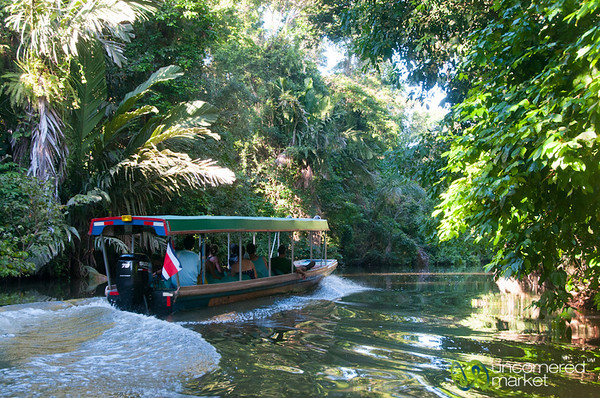 Boat Ride in the Tortuguero Canals - Costa Rica