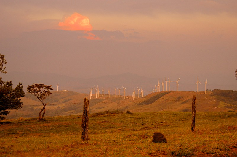 and the wind farm gave us a very special evening show.