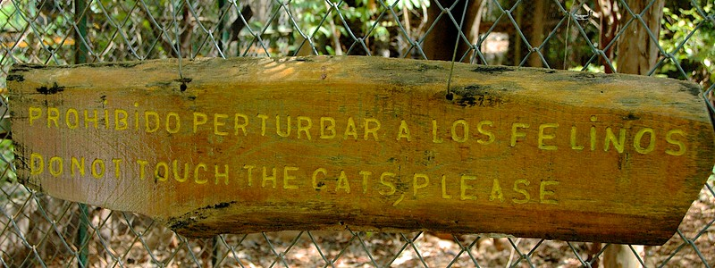 We'd been in the mountains, but dropped down to a lower elevation to visit Las Pumas Rescue Center.