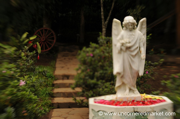 Angel in the Garden - Ruta de las Flores, El Salvador