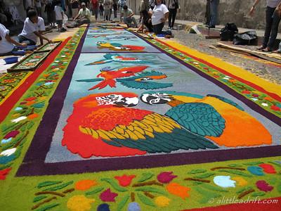 Semana Santa Parrot Carpet