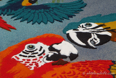 Very Detailed Holy Week Carpet