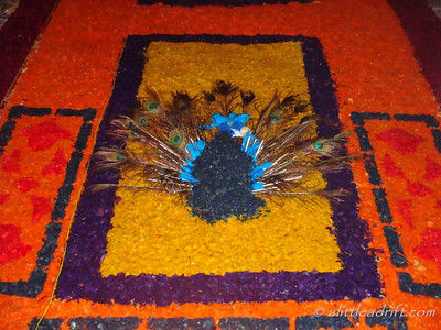 Peacock Carpet