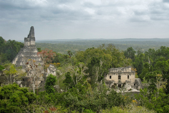 The view over the Tikal Ruins in far northern Guatemala.