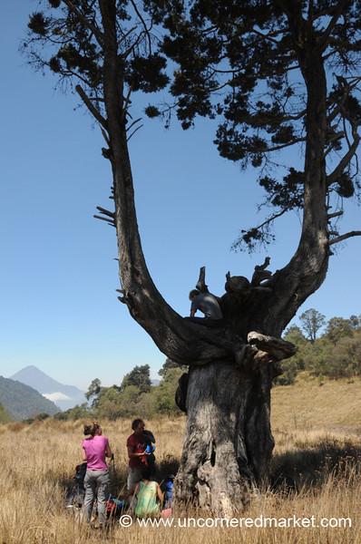 Hikers Rest Under Tree - Lake Atitlan, Guatemala