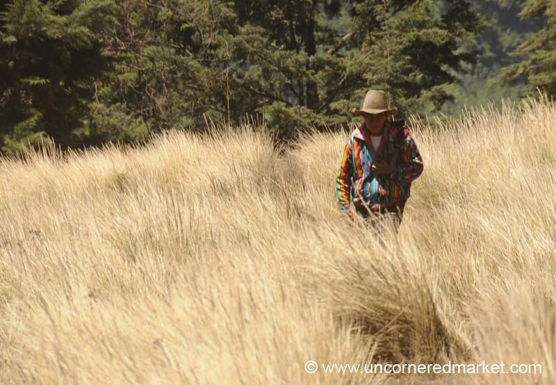 Guatemalan Man Walking Home - Lake Atitlan, Guatemala