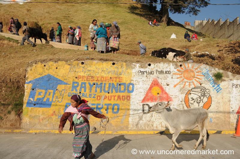 Woman Pulling Cow - San Francisco El Alto, Guatemala