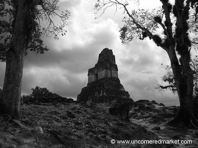 Tikal Ruins in Black and White - Tikal, Guatemala