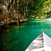 Kayaking the Rio Dulce out to sea.