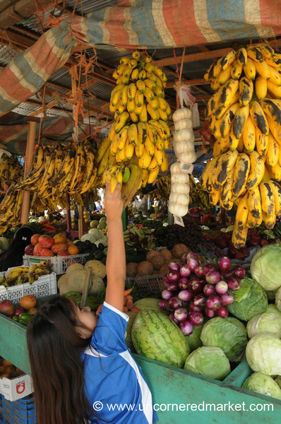 Girl Reaching for Bananas - La Esperanza, Honduras