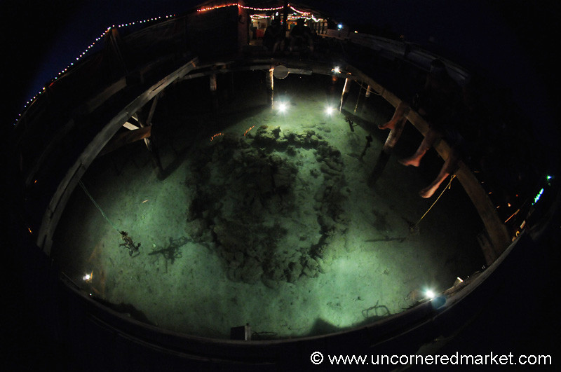 Babalu Bar, Aquarium - Utila, Honduras