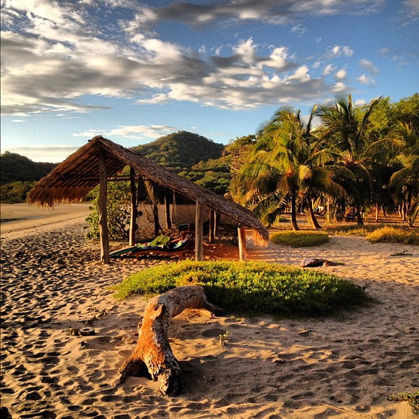 Late afternoon beach walk. Long shadows and driftwood. #Nicaragua #morgansrock