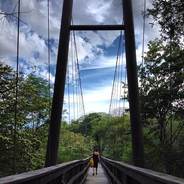 Jungle suspension bridge, en route to breakfast #morgansrock #Nicaragua