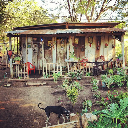 The funkiest house in the village gets decked out for #Christmas #Nicaragua