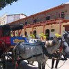 There were horse-drawn carriages sitting in the shade, waiting for customers,
