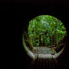 Tunnel on Arenal Trail