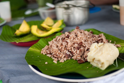 A delicious lunch of coconut rice, fresh avocado, and hearts of palm (and chicken for the meat eaters).