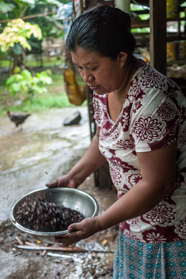 A woman cools and prepares the seeds for pressing.